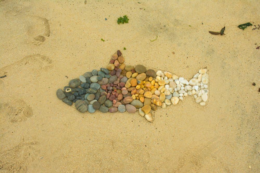 fisk av sten