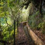 Höga berg och djupa dalar på Madeira