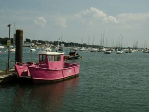 ferry boat in pink