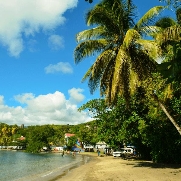 strand med palm st vincent